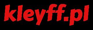 Jan Kleyff - ekspert finansowy
